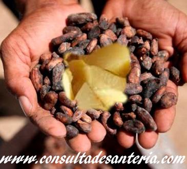 ori o cacao